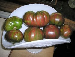 TOMATO * BERKELEY TIE DYE * ORGANIC HEIRLOOM SEEDS 2021