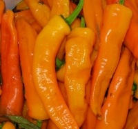 PEPPER, SPICY * DOUX LONG DANTIBES PAPRIKA * HEIRLOOM SEEDS 2020