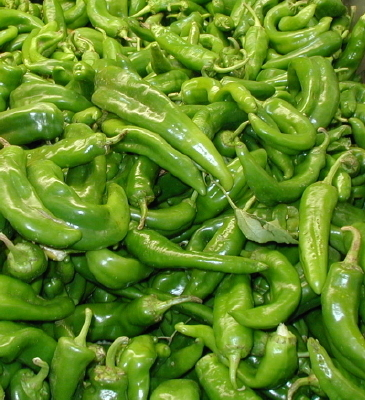 PEPPER, SPICY * ANAHEIM CHILE * ORGANIC HEIRLOOM SEEDS 2018