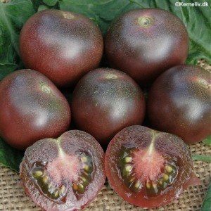 TOMATO * BLACK CHERRY * ORGANIC HEIRLOOM SEEDS 2020