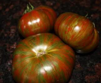 TOMATO * CHOCOLATE STRIPES * ORGANIC HEIRLOOM SEEDS 2017