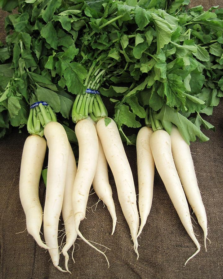 ASIAN * RADISH DAIKON * ORGANIC HEIRLOOM SEEDS 2018