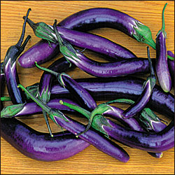 ASIAN * EGGPLANT PINGTUNG LONG * ORGANIC HEIRLOOM SEEDS 2020