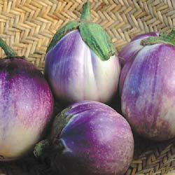EGGPLANT * ROSA BIANCA * ORGANIC HEIRLOOM SEEDS 2021