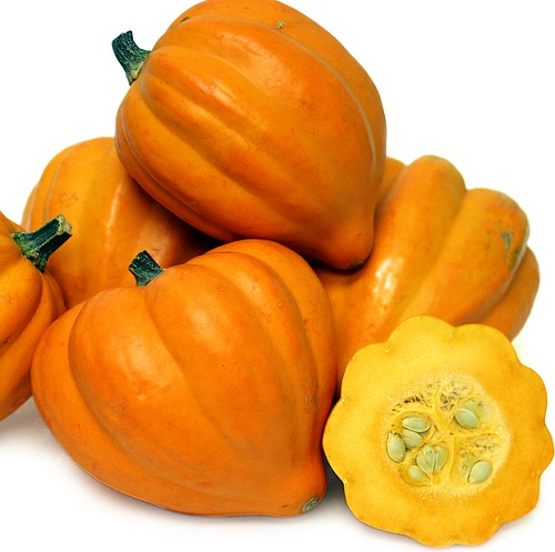SQUASH * GILLS GOLDEN PIPPIN * ORGANIC HEIRLOOM SEEDS 2017