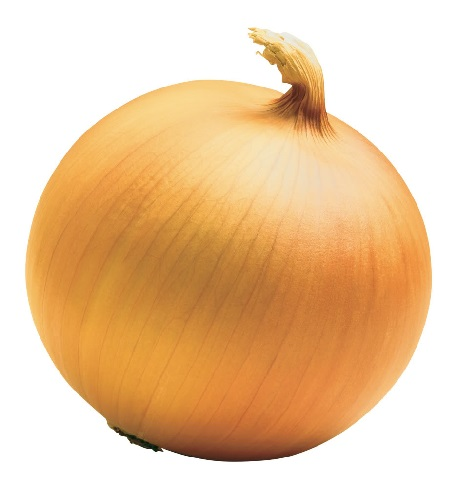 ONION * NEW YORK EARLY * ORGANIC HEIRLOOM SEEDS 2021