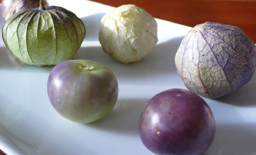 TOMATILLO * PURPLE DE MILPA * HEIRLOOM SEEDS 2017