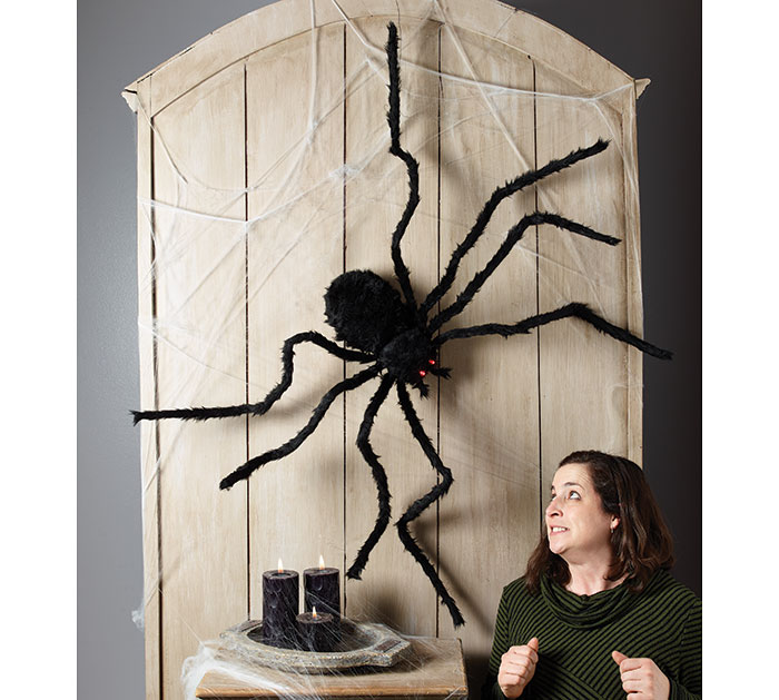 Black Spider Door Decoration Halloween Eyes Light Up Posable Batteries Included