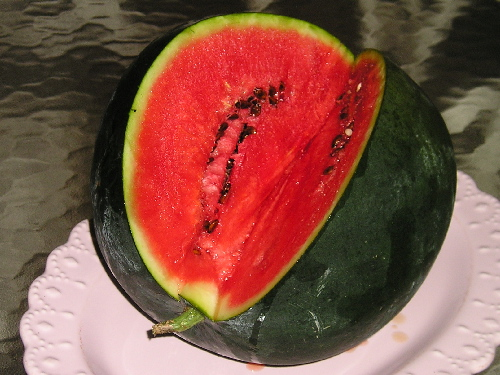 WATERMELON * SUGAR BABY * ORGANIC HEIRLOOM SEEDS 2021