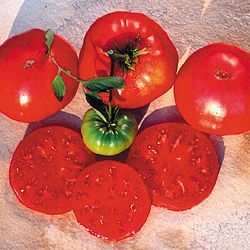 TOMATO * CRNKOVIC YUGOSLAVIAN * ORGANIC HEIRLOOM SEEDS 2017