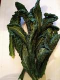 KALE * LACINATO TUSCAN * ORGANIC HEIRLOOM SEEDS 2021