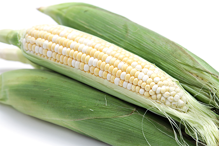 CORN * WHO GETS KISSED SE OP * ORGANIC HEIRLOOM SEEDS 2020